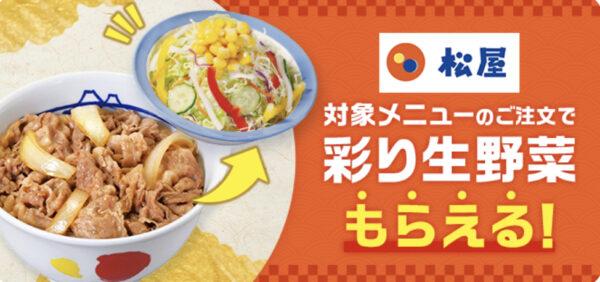 松屋 彩り生野菜